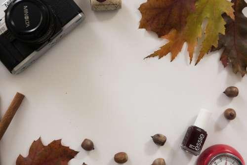 flat lay camera autumn leaves fall