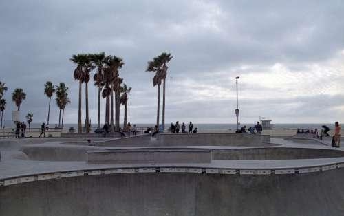 skater skate skateboarder venice sport
