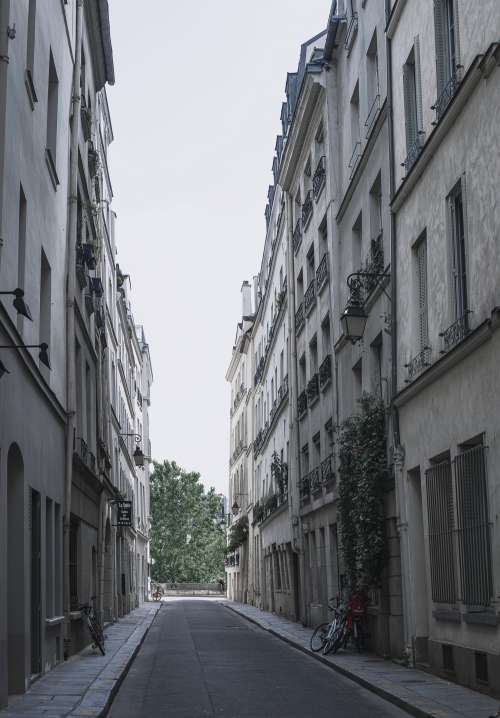 Empty Gray Street Photo