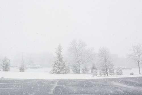 Snow Day Descends! Photo