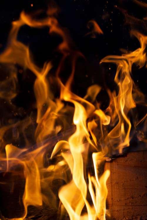 Campfire Flame Wood Free Photo