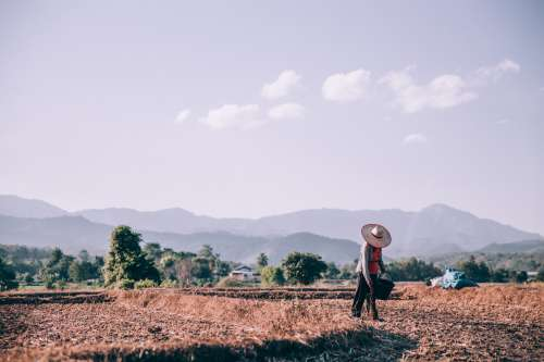 Person Prepares Land To Sow Seeds Photo