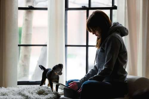 Woman Works While Dog Watches Photo