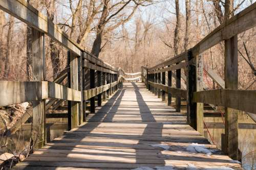 Rickety Wooden Bridge Surrounded By Trees Photo