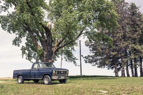 Old Pickup Truck Free Photo