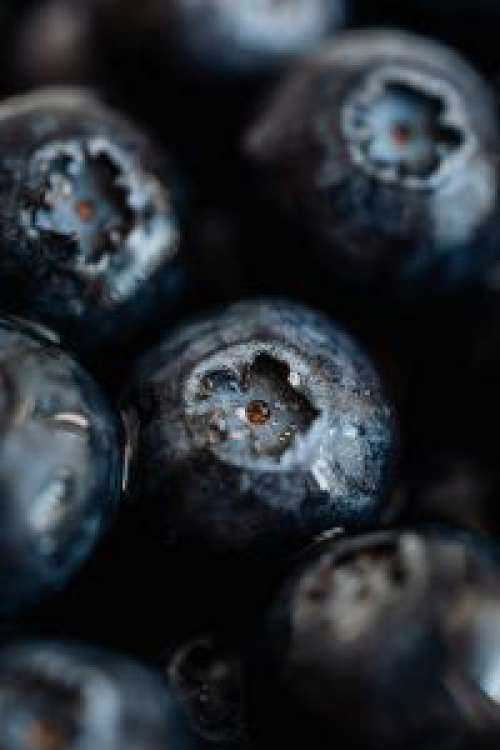 Blueberries Backgrounds