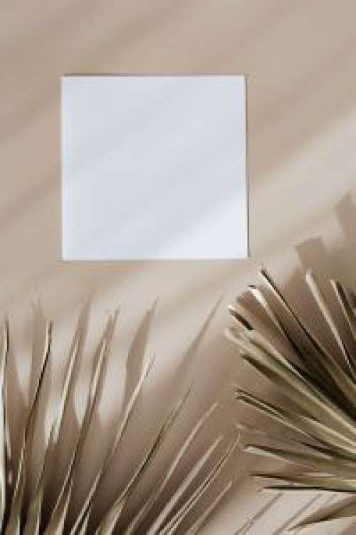 Palm identity