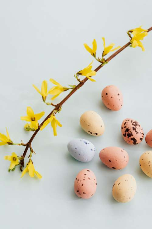 Easter Backgrounds - Free Photos