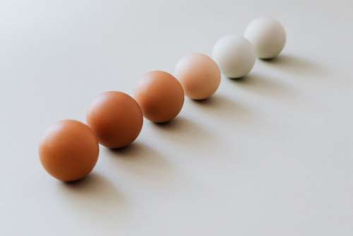 Shades of eggs