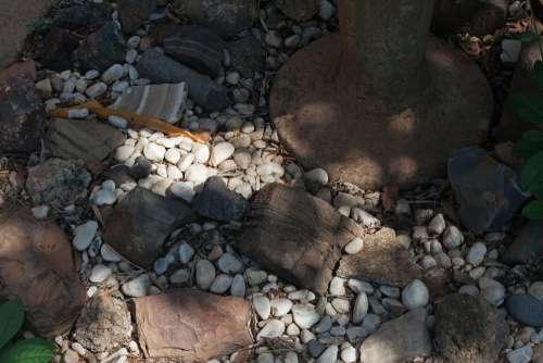 Sunlight On White Pebbles