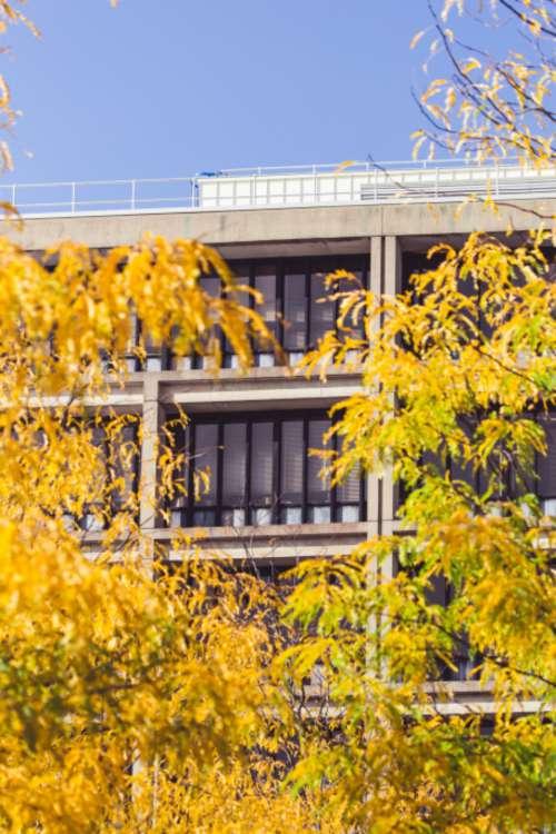 city autumn building facade fall
