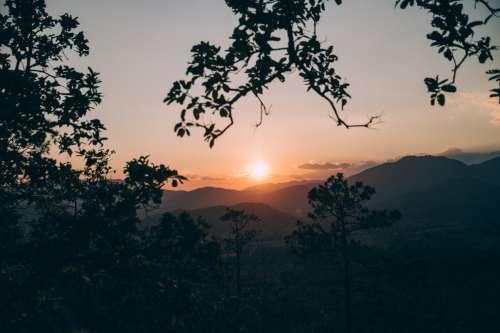 Tree Framed Sunset Photo