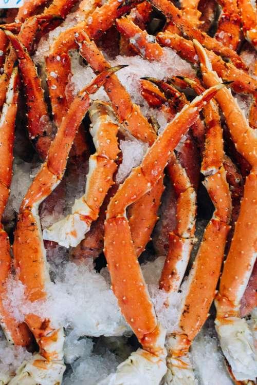 Crab claws close up