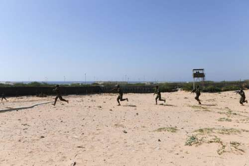 sand, people, army, soldiers, war, operation, gun, assault rifle, men, run, warriors, militaries