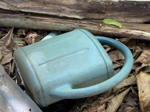 nature, watering can, wood, dead leaf, tool