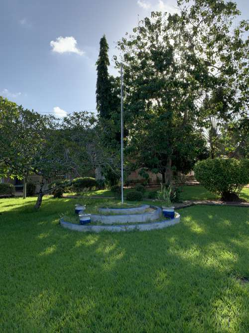 tree, green space, lawn, mast, courtyard, landscape