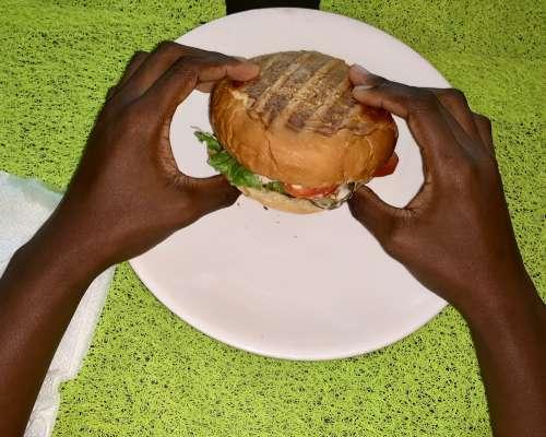 taste, burger, nutrition, meal, food, fast food, tasty, flavor