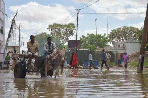 flood, people, rain, city, street, transport, natural disaster
