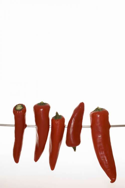 Red peppers on string