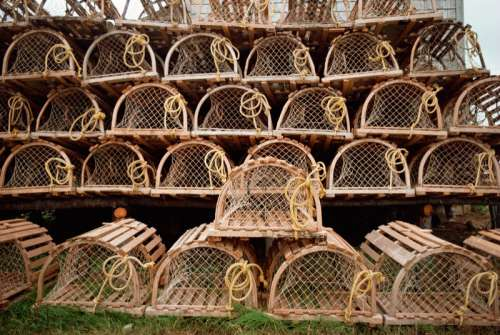 Rows of stacked lobster traps outdoors