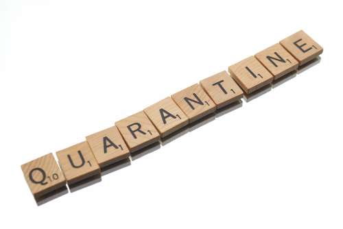 quarantine text disease virus social