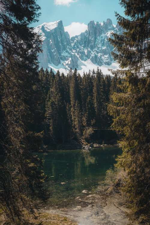 Pond In Forest A Foot Of Mountains Photo