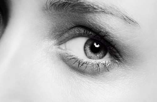 Grayscale Photo Of A Persons Left Eye Photo