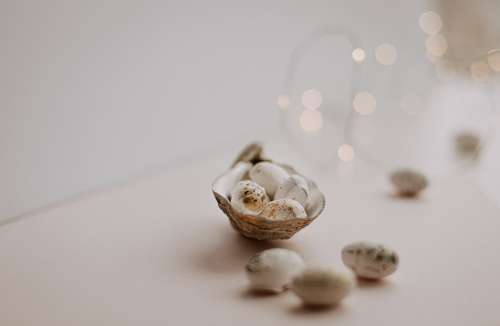 Speckled Bird Eggs In A Seashell Photo