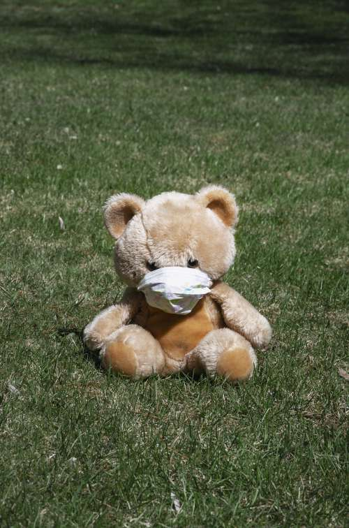 Teddy Bear On The Grass With A Face Mask Photo