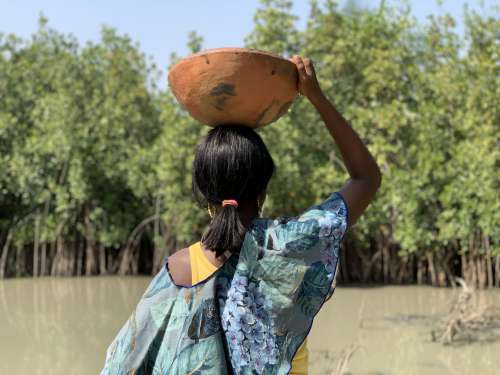 people, woman, lake, river, jar, work, household, calabash, fetch water