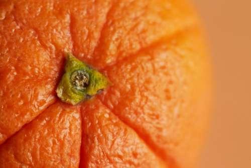 orange fruit macro texture food