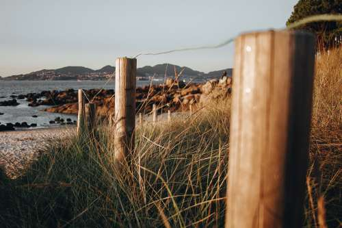Following Fence Line To The Shore Photo
