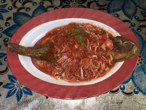 food, meal, dish, delicious, tasty, fried fish, akpavi, monyo, tomato juice, nutrition, diet, pepper, lunch