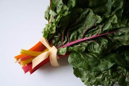 Vegetable Leafs Free Photo