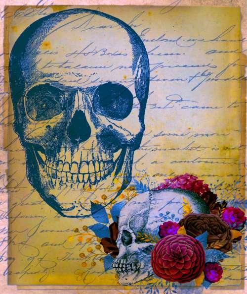 Skulls On Vintage Handwriting Paper