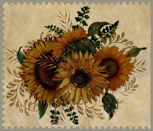 Vintage Sunflower Stamp