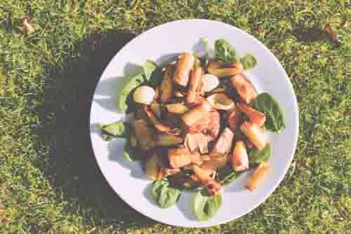 Vegetables and Salad On White Plate On Grass Top
