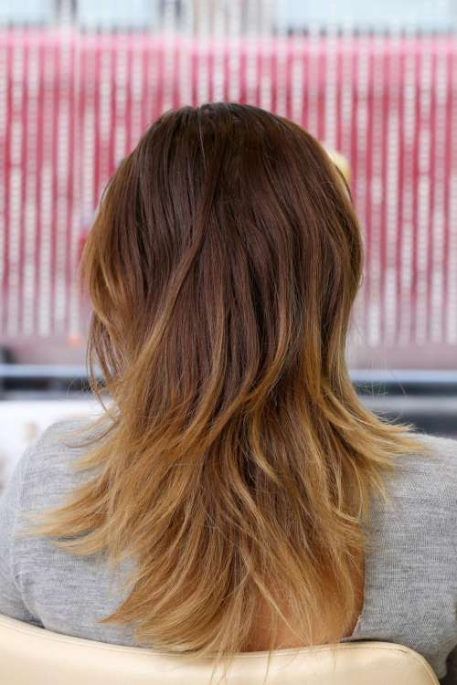 Beauty, hairstyle. The back of a fresh cut