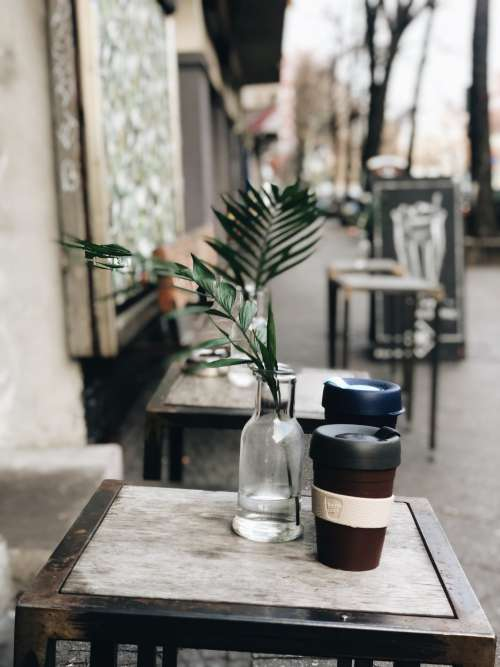Potted Plants And Coffee Cups On Patio Photo