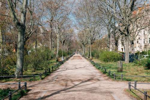 Clean Parks In Spring Time Photo