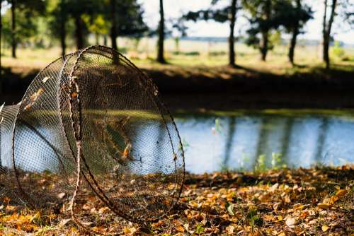 Fish net at the pond