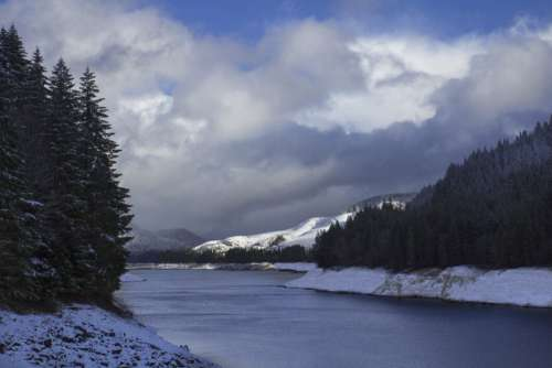 Winter River Forest Free Photo