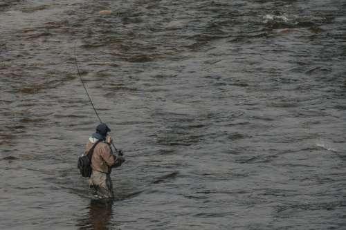 A Fisherman Reels In Photo