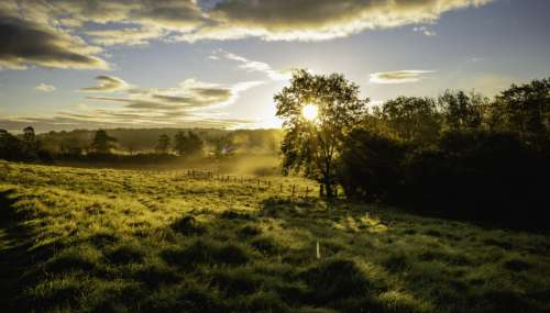 Country Field Landscape Free Photo