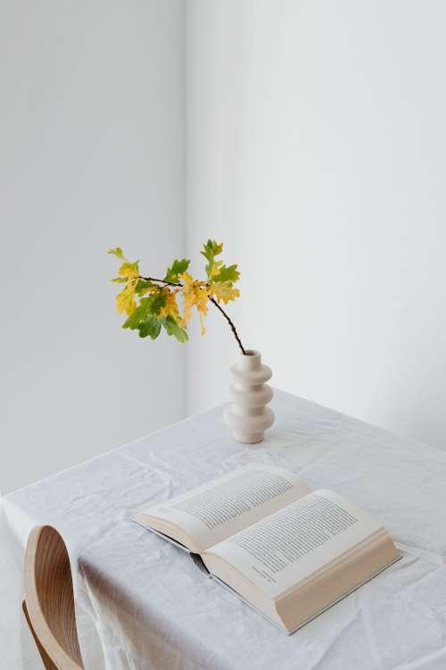 Pumpkins - autumn leaves - books